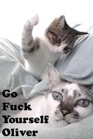 GFYO Poster IMDB